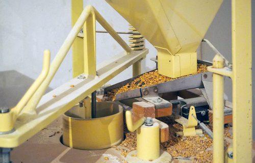 Le Croissant Fertile L'arrivée du blé